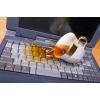 Ди.Сервис - Ремонт ноутбуков HP, Dell, Asus, Acer, Samsung, Lenovo, LG