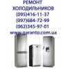 Ремонт холодильников посудомоечных машин на дому