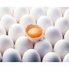 Продам меланж яичный