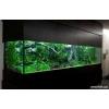 Дизайн аквариумов в Киеве