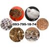 Продаем перепела, мясных, яичных и мясо-яичных пород