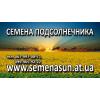 Продам семена подсолнечника Pioneer,Syngenta от 150$