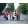 Профессиональная дрессировка собак в Донецке и области