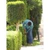 Срочно требуется садовник