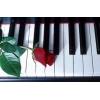 Музыкальный аккомпанемент. Ведущая