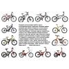 Продажа велосипедов любого типа в соотношении цены и качества