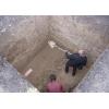 Вскопаем огород наведем порядок, спилим дерево, скосим траву, выкопаем пни яму