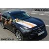Авто на свадьбу Бердянск